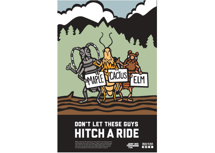 Don't Move Firewood Illustrated Poster